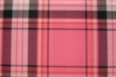 4. Pink Plaid