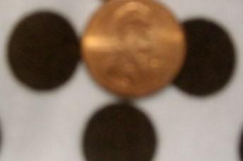 4. White-Brown Polka Dot 4Way